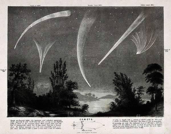 1741 Photograph - Comets In Night Sky by Wellcome Images