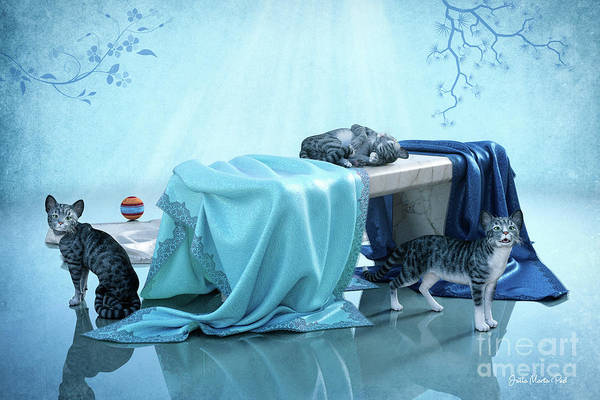 Digital Art - Comfortable by Jutta Maria Pusl