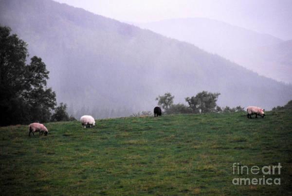 Photograph - Coming Rain by Thomas R Fletcher