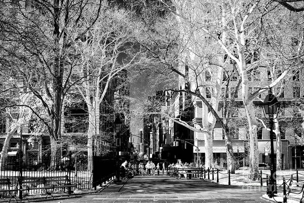 Photograph - Coming To City Hall Park by John Rizzuto