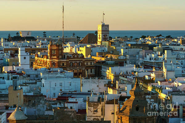 Photograph - Company Street From West Tower Cadiz Spain by Pablo Avanzini
