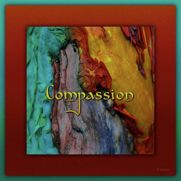 Digital Art - Compassion by Richard Laeton