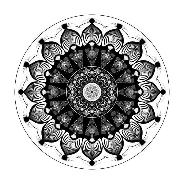 Digital Art - Complexical No 2374 by Alan Bennington