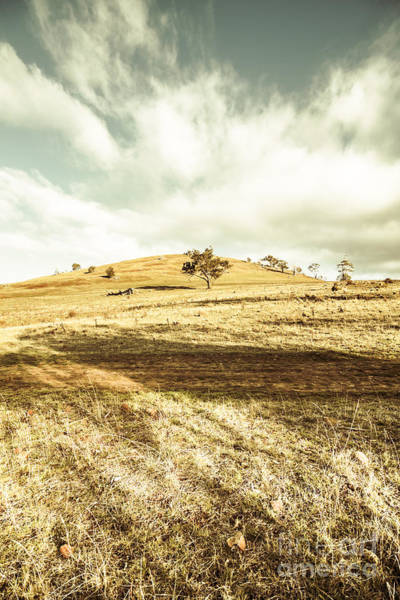 Photograph - Conara Country Landscape by Jorgo Photography - Wall Art Gallery