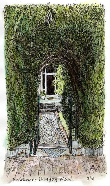 New South Wales Drawing - Concealed Pathway by Anne Huth