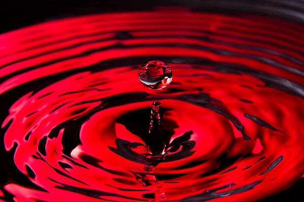 Photograph - Concentric Ruby Water Drop by SR Green