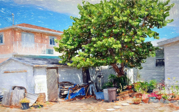 Digital Art - Conch Key Sea Grape Tree 3 by Ginger Wakem