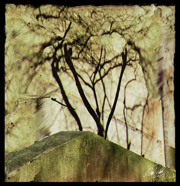 Photograph - Concrete Jungle by Leon De Vose