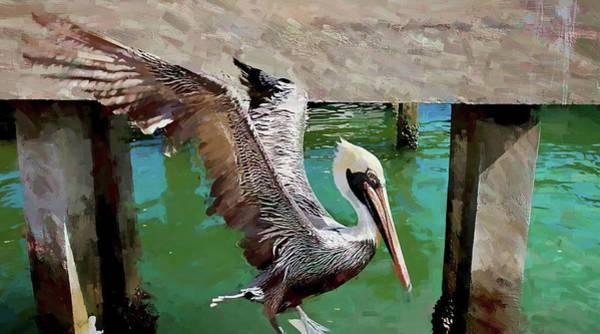 Photograph - Concrete Pelican by Alice Gipson