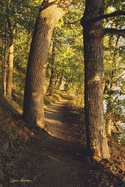 Photograph - Conference Point Path - Lake Geneva Wisconsin by Bruce Thompson