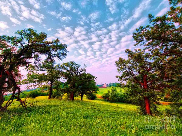 Photograph - Conley Road Meadow, Oaks, Barn, Spring  by Tom Jelen