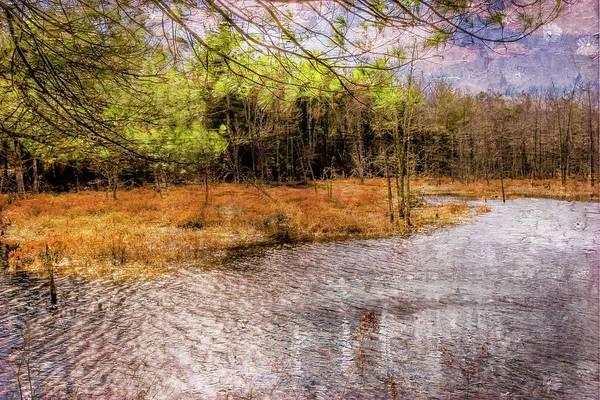 Digital Art - Connecticut Marsh Area by Rusty R Smith