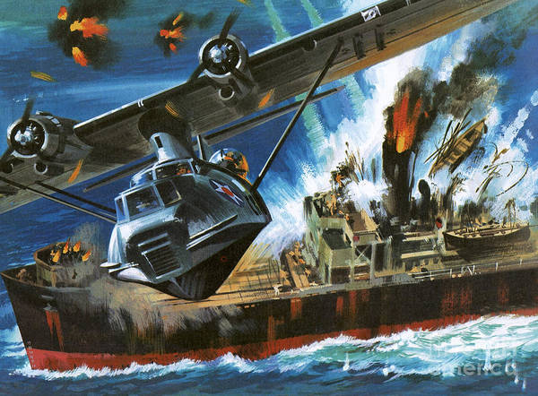 Bomber Painting - Consolidated Pby Catalina by Wilf Hardy