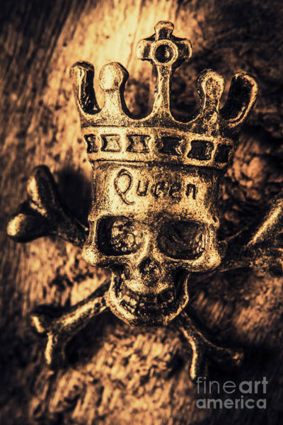 Bone Photograph - Conspiracy Of The Monarch by Jorgo Photography - Wall Art Gallery