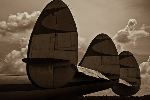 Wall Art - Photograph - Constellation Tail by Patrick  Flynn