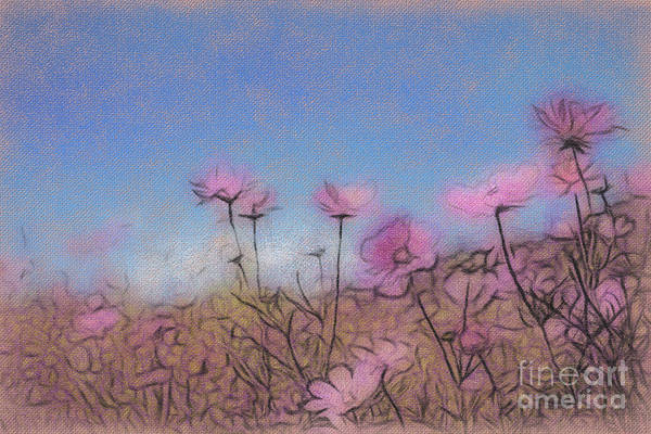 Beautiful Park Drawing - Conte Drawing Fully Bloomed Colorful Cosmos On Mountain Landsca by Eiko Tsuchiya