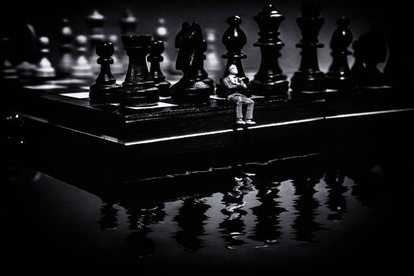 Liquify Photograph - Contemplating Your Next Move by Marnie Patchett