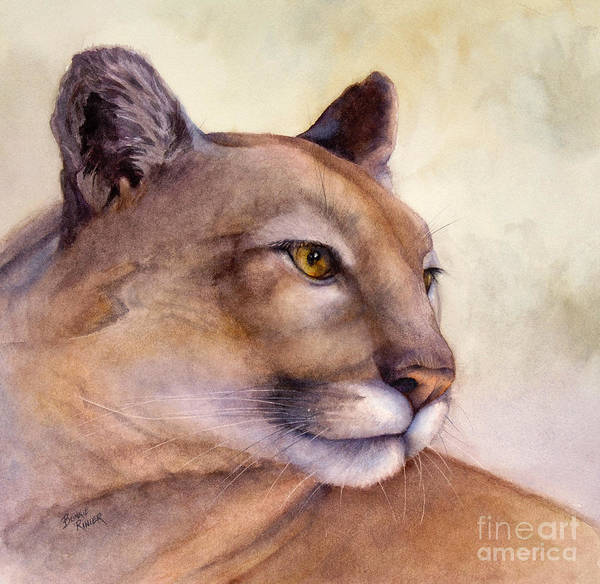 Mountain Lion Painting - Contemplation by Bonnie Rinier