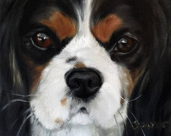 King Charles Spaniel Painting - Contemplation by Mary Sparrow