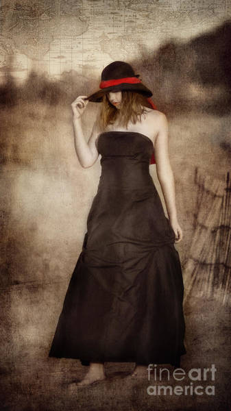 Photograph - Contemplation- Painted Lady by Alissa Beth Photography