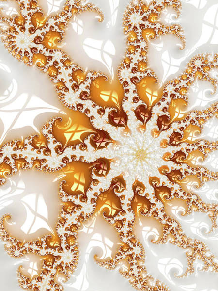 Digital Art - Contemporary Fractal Art White And Golden by Matthias Hauser