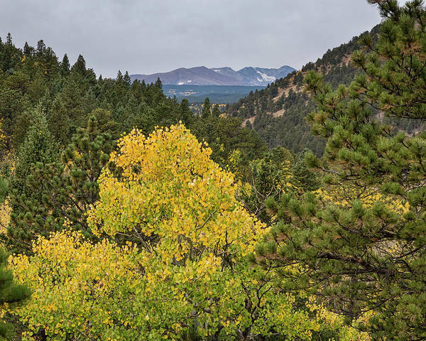 Photograph - Continental Divide Autumn View by James BO Insogna