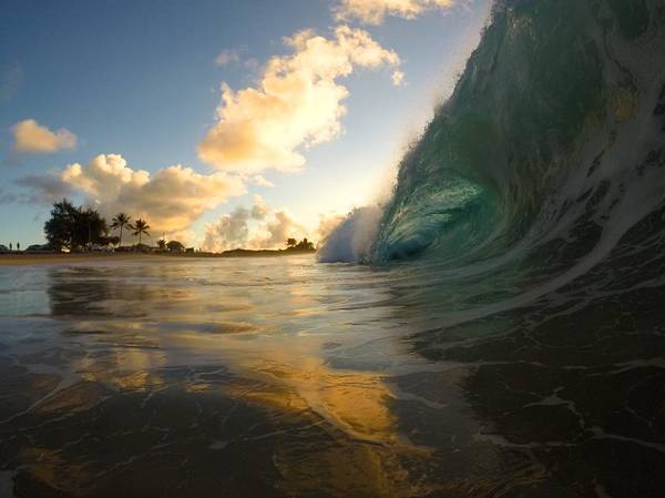 Bodyboard Photograph - Contrasting Forces by Benen  Weir