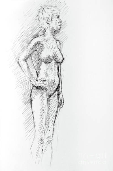 Wall Art - Drawing - Controposto A Pen And Ink Drawing Of Female Nude by Adam Long