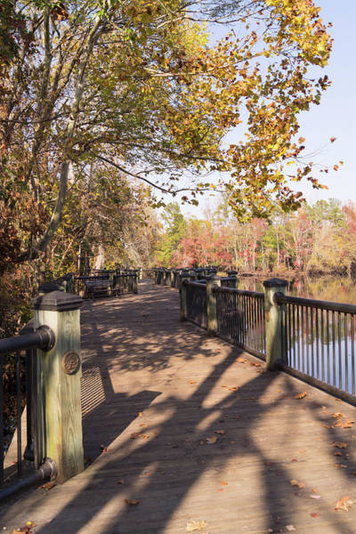 Photograph - Conway Riverwalk In Autumn by MM Anderson