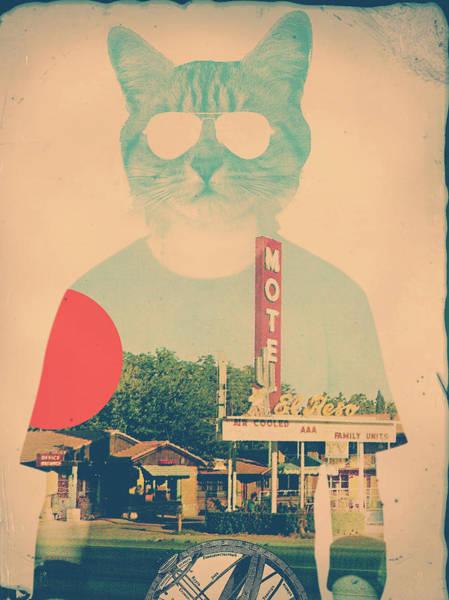 Cool Cat Digital Art - Cool Cat by Ali Gulec