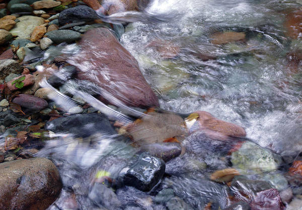 Photograph - Cool Clear Water #2 by Ben Upham III