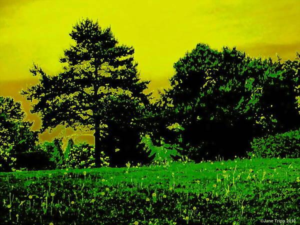 Wall Art - Photograph - Cool Evening Grass  by Jane Tripp