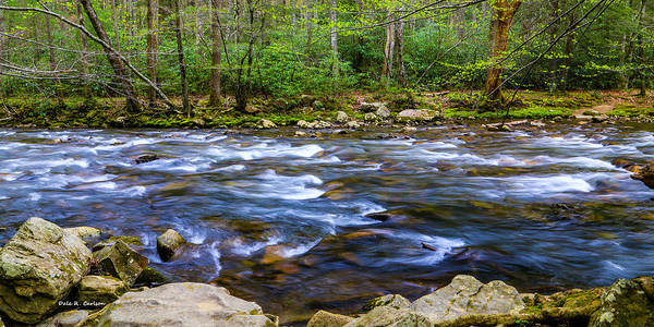 Photograph - Cool Green Spring Flow by Dale R Carlson