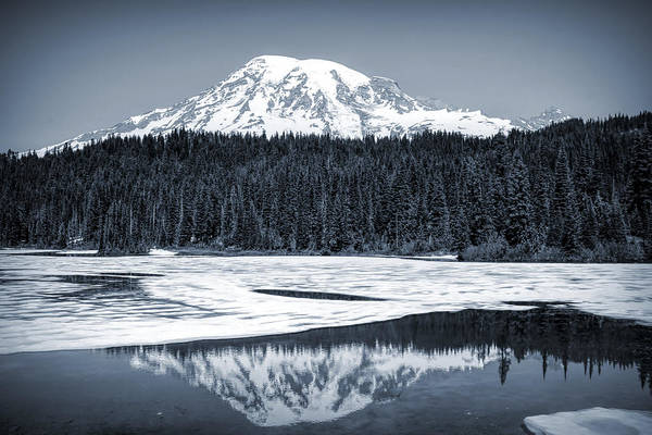 Photograph - Cool Mount Rainier Reflection by Dan Sproul