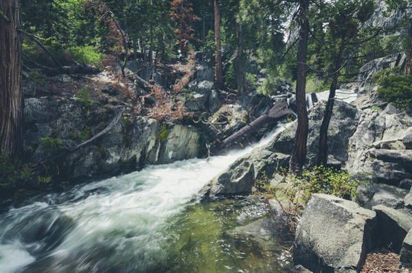 Photograph - Cool Mountain Stream by Margaret Pitcher