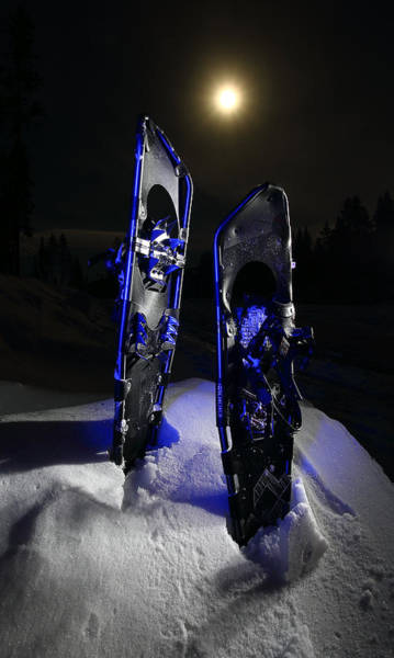 Photograph - Cool Winter Shoes by David Andersen