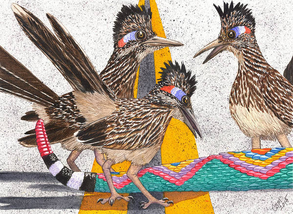 Roadrunner Painting - Coontail by Catherine G McElroy