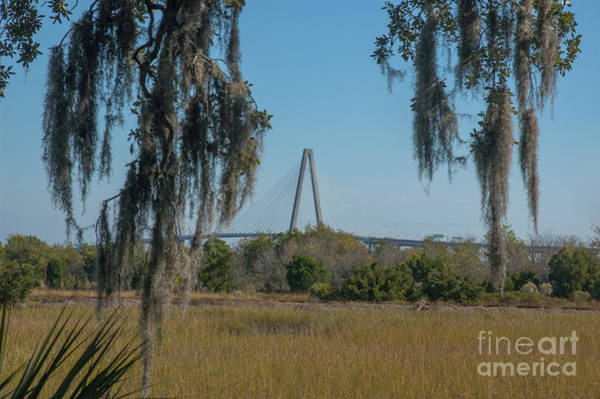 Photograph - Cooper Bridge Run Lowcountry Style by Dale Powell