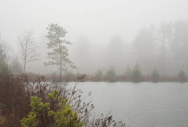 Photograph - Cooper Lake Foggy Morning by Nancy De Flon