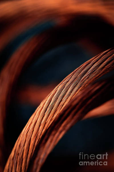 Cabling Photograph - Copper Braided Cable by Jozef Jankola