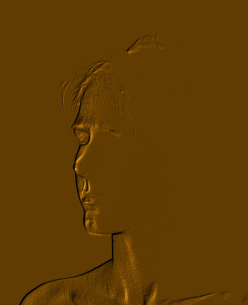 Photograph - Copper Kammie-three Quarters Portrait by David Coblitz