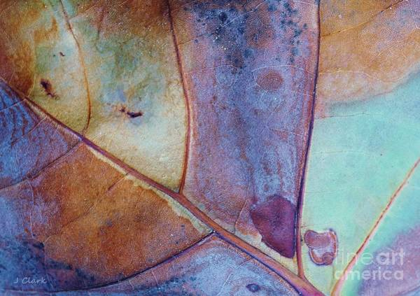 Bronze Leaf Wall Art - Painting - Copper Patina by John Clark