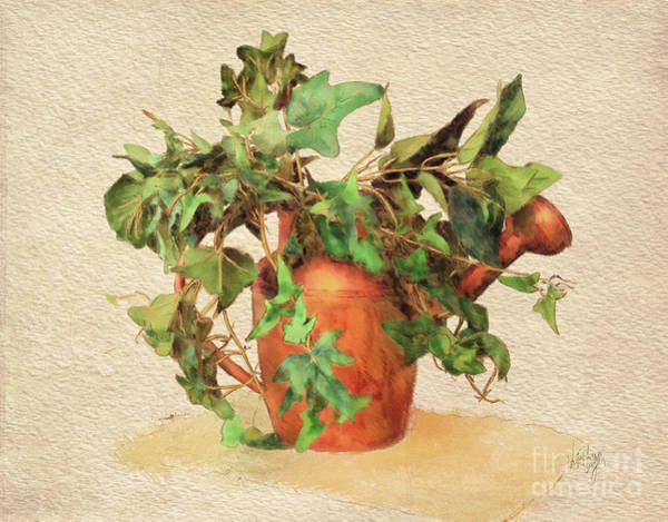 Wall Art - Digital Art - Copper Watering Can by Lois Bryan