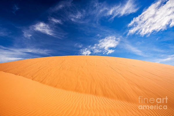 Photograph - Coral Pink Sand Dunes State Park, Kanab, Utah by Bryan Mullennix