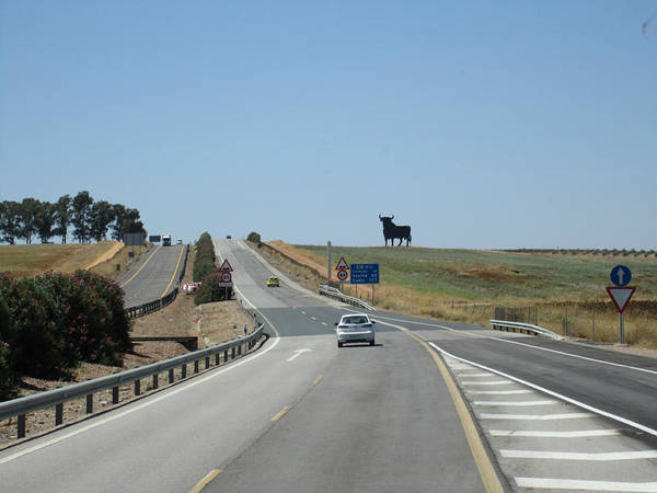 Photograph - Cordoba Country Side Scenic Bull Highway To Seville Sevilla Spain by John Shiron