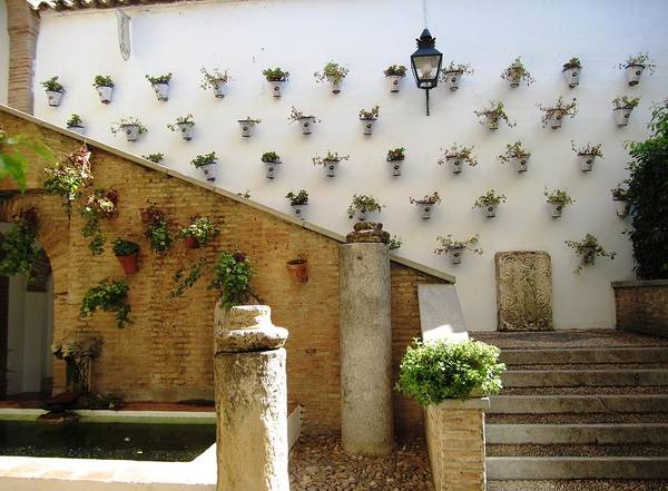 Photograph - Cordoba Court Yard Plant Gallery Spain by John Shiron