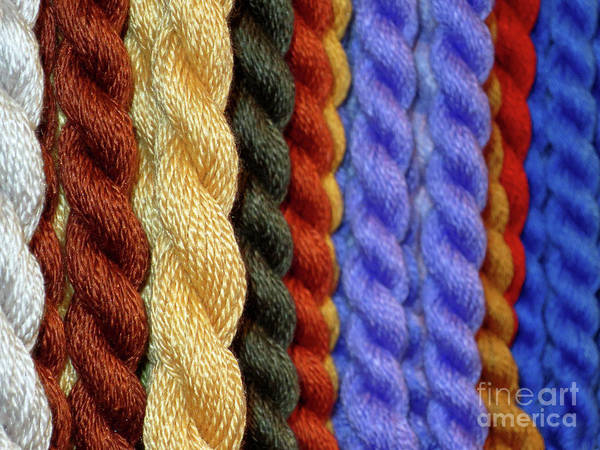 Photograph - Cords Of Color by Rick Locke