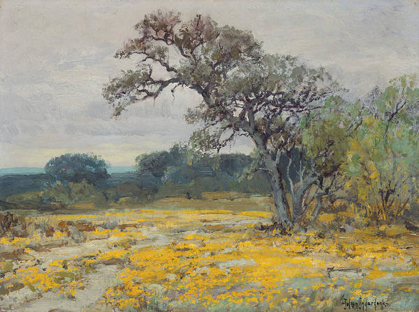Painting - Coreopsis, Near San Antonio, Texas by Julian Onderdonk