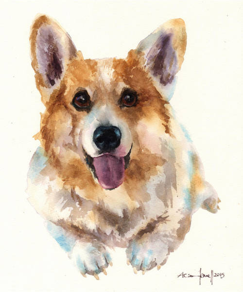 Wall Art - Painting - Corgi Painting by Alison Fennell