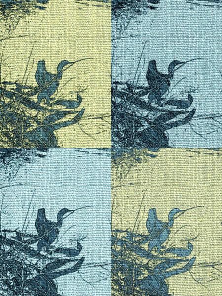 Photograph - Cormorant Collage Beach Style by Ben and Raisa Gertsberg